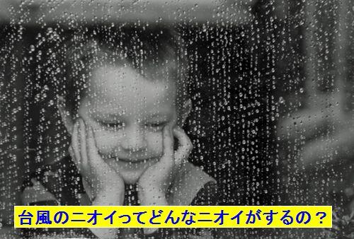窓の外を見る少年1
