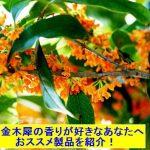 金木犀(キンモクセイ)の香りが好きなあなたへおススメ製品を紹介!口コミ・画像あり