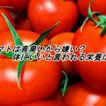 トマトは青臭いから嫌い?体にいいと言われる栄養は?