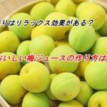 梅の香りはリラックス効果がある?おいしい梅ジュースの作り方は?