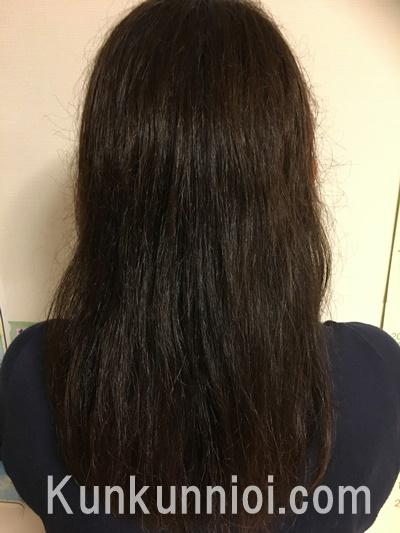 洗髪後1日目